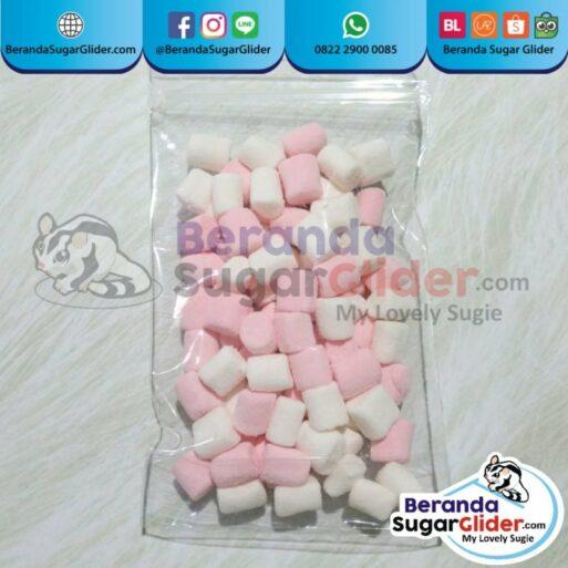 Marshmallow Snack Makanan Hewan Peliharaan Kecil Sugar Glider SG Bajing Kelapa Landak Mini Tupai Terbang Mamalia