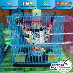 Kandang Besi Lipat Sweet Ukuran Kecil Small Size S Full Set 2 Hewan Peliharaan Joey Sugar Glider SG Bajing Kelapa Burung Gecko Guinea Pig Hamster Marmut Tupai Terbang